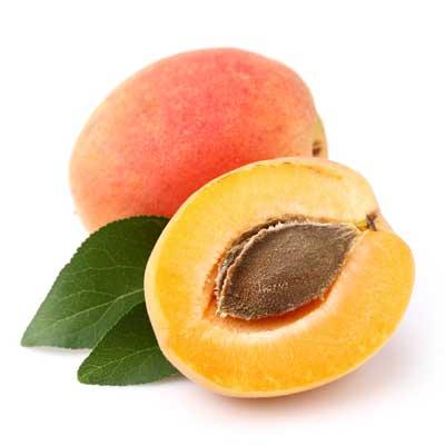 frutas-que-pueden-comer-los-perros-albaricoque